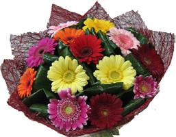 Цветов доставка цветов коста-рика заказ цветов